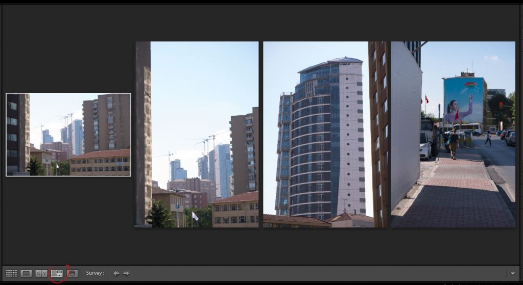 Lightroom Library panoul central Survey View