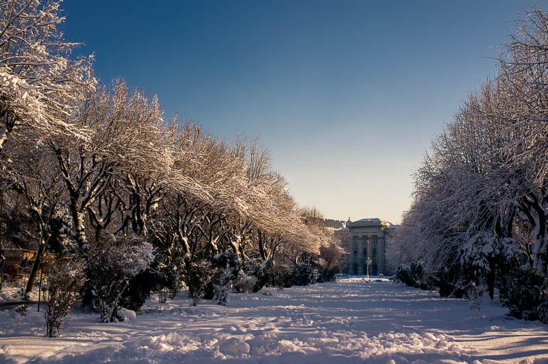 Fotografie iarna  DSCF1444